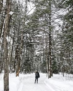 Outdoor Activities - 40 Bucket List Things To Do In Ottawa This Winter - Narcity