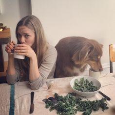 How to Instagram Like Amanda Seyfried - Amanda Seyfried