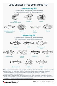 Low Mercury and High Mercury Fishes - Consumer Reports Magazine