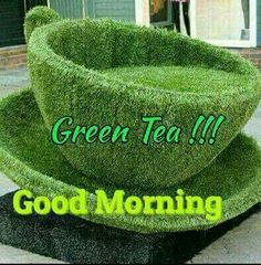 Good morning with green tea Good Morning Msg, Good Morning Cards, Good Morning Picture, Good Night Image, Gd Morning, Happy Morning Quotes, Morning Greetings Quotes, Morning Messages, Beautiful Morning Pictures