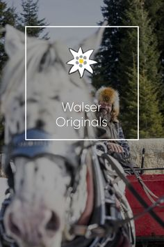 Discover the diversity of Kleinwalsertal! Get to know an astonishing ski & hiking area, beautiful accommodations, excursions, adventures and more. Adventure, Holiday, Vacations, Holidays Events, Adventure Nursery, Holidays, Vacation