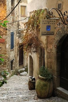 Menton, Provence