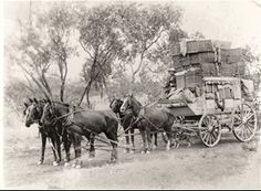 Christmas mail is delivered to Cloncurry, NSW, Australia, by a Cobb & Co coach, 1908 v Australian Continent, Destinations, Mystery Of History, History Museum, Nasa History, Largest Countries, History Photos, Historical Pictures, Women In History