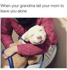 True Pictures - Search our So True memes, pictures, videos & more! Find funny but true memes that show just how hilarious life can be. Really Funny Memes, Stupid Funny Memes, Funny Tweets, Funny Relatable Memes, Funny Posts, Funny Stuff, Funny Things, Siblings Funny, Animals