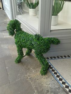 Seen outside a shop doorway in York, North Yorkshire.  Funny!