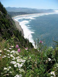 beautiful. Manzanita Beach, Oregon Coast. (from Hug Point state park?)