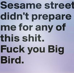 Damn it, sesame street! Mr. Rodgers is the one who prepared me for real life.