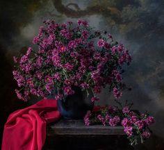 Сентябринки - Смотрю на цветы сентябринки, Что нравятся мне до сих пор: Присели в саду вдоль тропинки, Весну возвратили во двор!