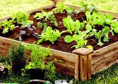 Make A Raised Garden Bed #DigIn