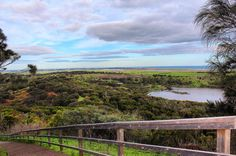 If you are going to drive the Great Ocean Road (Aus) I highly recommend a visit to Tower Hill Nature Reserve in the evening - that way you can climb to this volcanic crator's highest peak and be rewarded with incredible views as the sun sets!!  by alysthewildlife