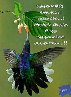 Unique Quotes, Inspirational Quotes Pictures, Tamil Motivational Quotes, True Words, January, Life Quotes, Mary, Facts, Symbols