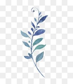 leaves,watercolor leaves,hand-painted flowers,blue,watercolor,hand-painted,flowers,blue clipart,branches clipart Background Drawing, Flower Background Wallpaper, Flower Backgrounds, Watercolor Splatter, Watercolor Feather, Watercolor Art, Free Paper Texture, Photo Frame Design, Leaf Art