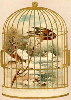 vintage bird in cage christmas card snow bird barn lake dome art landscape Decoupage Vintage, Vintage Ephemera, Vintage Cards, Vintage Paper, Vintage Postcards, Vintage Pictures, Vintage Images, Munier, Bird Barn