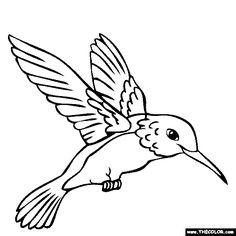 Ideas For Humming Bird Outline Hummingbird Drawing Bird Coloring Pages, Online Coloring Pages, Coloring Sheets, Coloring Books, Free Coloring, Adult Coloring, Mandala Coloring, Hummingbird Colors, Hummingbird Drawing