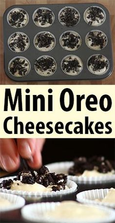 Oreo Mini Cheesecakes are a creamy and delicious dessert that's surprisingly easy to make! How can you go wrong with Oreos and cheesecake in the same bite? Mini Desserts, Easy Desserts, Delicious Desserts, Dessert Recipes, Yummy Food, Oreo Desserts, Oreo Cheesecake Cupcakes, Oreo Cheesecake Recipes, Oreo Cookies