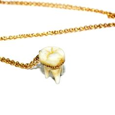 Deny - Collecting Souvenirs Necklace    #statement necklace #statament jewelry #teeth #weird jewelry #cute #amazing #tooth fairy