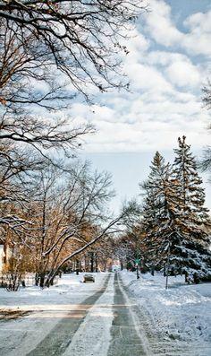 Winnipeg, Manitoba, Canada (Carla Dyck Photography)