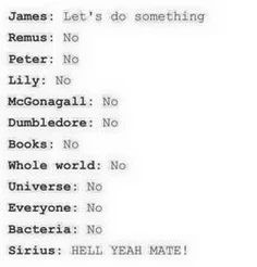 The marauders summed up in one picture :P Harry Potter Marauders, Harry Potter Jokes, Harry Potter Universal, Harry Potter Fandom, Harry Potter Hogwarts, The Marauders, Percy Jackson, Saga, Mischief Managed