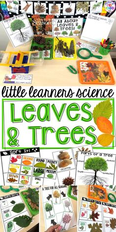 Tree & Leaf science center (fall or tree study) with printables vocabulary cards book anchor charts and discovery pages (science journal pages) read aloud anchor charts and a family note. For preschool pre-k and kindergarten. Science Center Preschool, Science Area, Preschool Lessons, Preschool Learning, Science Lessons, Science Activities, Teaching, Creative Curriculum Preschool, Preschool Family