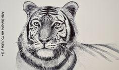 Dibujando animales: cómo dibujar un tigre - Arte Divierte   #arte #dibujo #ArteDivierte #tigre #animales #artistleonardo #LeonardoPereznieto #tutorial  Haz clíck aquí para ver mi libro: http://www.artistleonardo.com/#!ebooks/cwpc