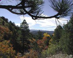 Top of the World Views | Hayden Outdoors