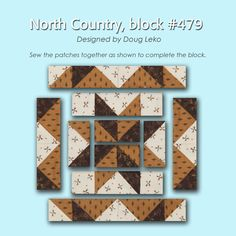 100 Blocks Sampler Sew Along   Block 21