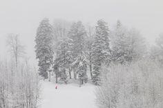 Winter sport by EvgeniyBondarenko #nature #mothernature #travel #traveling #vacation #visiting #trip #holiday #tourism #tourist #photooftheday #amazing #picoftheday