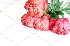 STYLED STOCK PHOTO - red PEONIES III by Nellaino on , White desk, Flatlay,Flower, Small businesses,Flower, Floral, Pictures