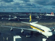 Singapore Airlines London, 1974 with a handful of other distinct liveries in the background. Boeing 707, Boeing Aircraft, Singapore Photos, Cargo Airlines, Commercial Aircraft, Concorde, Flight Attendant, Spacecraft, Military Aircraft