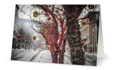 Lights 5x7 Blank Greeting Card Perfect for by PatrickRabbatPhotos