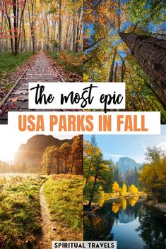 With international travel out of the question this fall, why not check out one of America's great national parks? Enjoy cooler weather and see the incredible fall colors. Here are the 15 best American national parks to visit this fall! #nationalparks #usa #america yosemite national park | grand canyon national park | glacier national park | Shenandoah national park | joshua tree natonal park | smoky mountains national park | everglades national park | crater lake national park