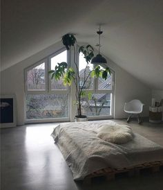"""188 Likes, 2 Comments - The Freedom State Online Store (@thefreedomstateonline) on Instagram: """"Morning loft spaces """""""