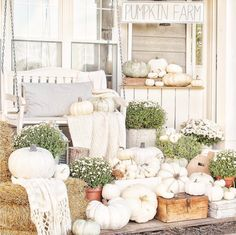 It's time to decorate your fall front porch! Rounding up the best fall porch décor ideas to give you plenty of festive Autumn inspiration. White Pumpkin Decor, White Pumpkins, Pumpkin Decorating, Porch Decorating, Decorating Ideas, Pumpkin Wallpaper, Porch Makeover, Autumn Inspiration, Farmhouse Front