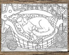 Autumn Kitty - Printable Adult Coloring Page from Favoreads (Coloring book pages for adults and kids, Coloring sheets, Colouring designs) Cat Coloring Page, Printable Adult Coloring Pages, Animal Coloring Pages, Free Coloring Pages, Coloring Sheets, Coloring Books, Fairy Coloring, Free Christian Clip Art, Drawings