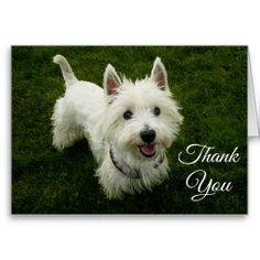 Shop West Highland Terrier Puppy Dog Blank Greetng Card created by alwaysdogs. Westie Puppies, Westies, Dogs And Puppies, West Highland Terrier Puppy, Green Grass Background, Puppy Images, Dog Cards, White Terrier, Garden Statues