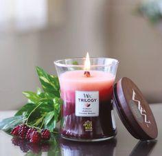 Et si nous lancions un concours de la plus élégante des bougies parfumées? La petite TRILOGY de chez WoodWick fera partie à coup sûr de notre Top 3!  ( @vivawang_fragrance) #woodwick #woodwickcandle #woodwickcandles #bougie #concours #diffuseur #bougieparfumee #elegance #smart #framboise #trilogy #top3 #cadeau #decoration #packaging #design #tendance #photographer #parfum #fragrance