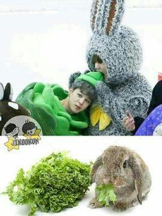 BTS Bangtan boys Jikook Jimin x Jungkook Foto Bts, Jimin Jungkook, Bts Bangtan Boy, Jungkook Eating, K Pop, Bts Citations, Les Aliens, Bts Memes Hilarious, Fun Meme