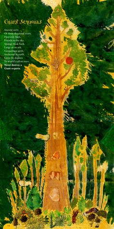 Poetrees by Douglas Florian: . From coconut palms and bristlecone pines to baobabs and banyans... #Books #Poetry #Kids #Trees