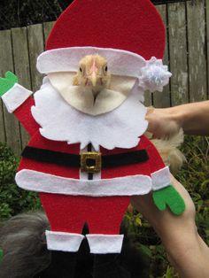 Santa Chicken costume by MuchAdoAboutCluckin on Etsy