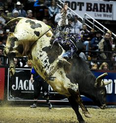 Event Troy Dunn Bull Riding Invitational Townsville 16