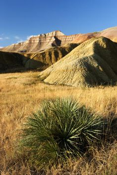 The breathtaking natural formations that make up the Badlands National Park offer acres of dramatic gorges, towering peaks, and rolling prairies. Badlands National Park, National Parks, Vacation Places, Vacation Spots, Peace In The Valley, Picture Places, Scenic Photography, South Dakota, Travel Usa