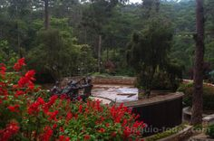 Baguio City most recent photos. A documentary photography of the Summer Capital of the Philippines. Baguio Philippines, Baguio City, Botanical Gardens, Real Estate, Patio, Outdoor Decor, Documentary Photography, Real Estates, Terrace
