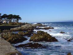 Monterey. CA  Everything on scuba diving: http://divingtales.com.