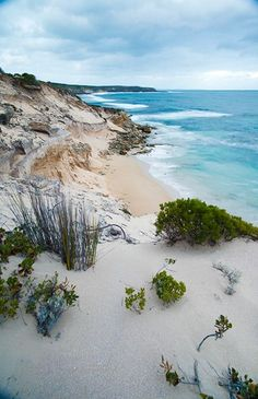 Eyre Peninsula, South Australia. Go to www.YourTravelVideos.com or just click on photo for home videos and much more on sites like this.