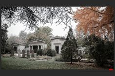 https://flic.kr/p/B14L56 | Autumn at the Jewish cemetery in Ferrara | © All rights reserved. Use without permission is illegal.