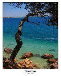 Figueirinha Beach, Setubal, Portugal Copyright: Antonio Serra Copyright: Antonio Serra