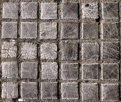 "der-gorgonaut: ""              wodden squares // middle of 2014 // panasonic dmc-zs15 (by Georg Nickolaus)              """