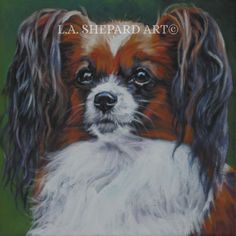 """A Papillon dog art portrait print of an LA Shepard painting 12x12"""". Here's a wonderful tribute to your best friend and favorite breed- the Papillon ! from an original painting by L.A.Shepard, whose unique, beautiful work has been collected around the world. Your print will be individually signed under the image by the artist, and initialed on the image. Copyright text is for display purposes only and will not appear on your artwork. The image is 12x12 inches and is printed on 13x19"""" 100%..."""