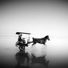 Delman Istimewa by Hengki Koentjoro Bw Photography, Monochrome Photography, Black And White Photography, Semarang, Horse Carriage, Going Home, Black White Photos, Colorful Pictures, Artist Art