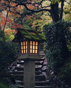 #jojakkoji #arashiyama                                                                                                                                                                                 More